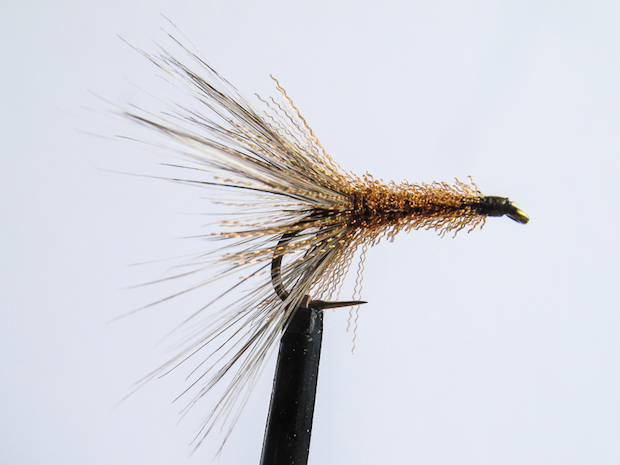 Looking forwards tying backwards eat sleep fish tying the fly in reverse makes it easier to tie and its an ideal pattern for a beginner to tackle as an easy and productive fly ccuart Choice Image